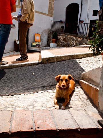 Sunday morning, Spoleto, Italy. By Sandy Lang, June 2011.